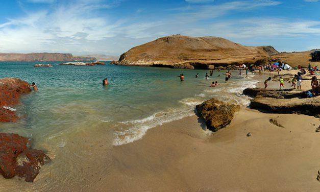 Les charmes de la plage de Paracas lors d'un séjour au Pérou